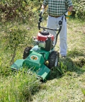 Where to rent Brush Cutter, Billy Goat in Xenia OH